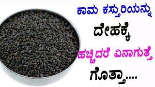 ಕಾಮ ಕಸ್ತುರಿಯನ್ನು ದೇಹಕ್ಕೆ ಹಚ್ಚಿದರೆ ಏನಾಗುತ್ತೆ ಗೊತ್ತಾ.... | Health Benefits of Basil Seeds |