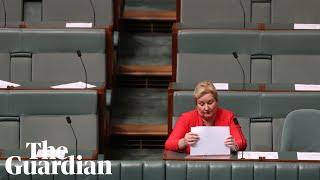 Ann Sudmalis attacks Liberal 'bullying'