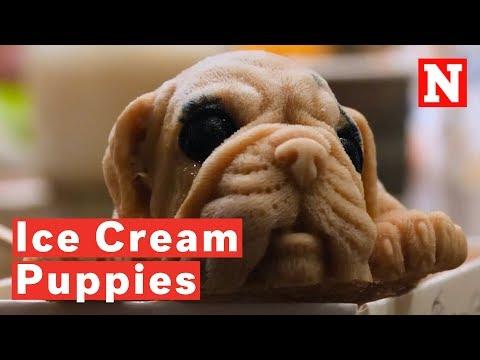 Ice Cream Puppy Treats On Sale In Taiwan