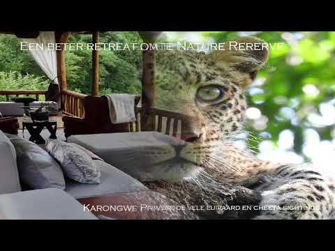 Luxe Zuid Afrika Safari reizen Greater Kruger Park Karongwe Private Nature Reserve