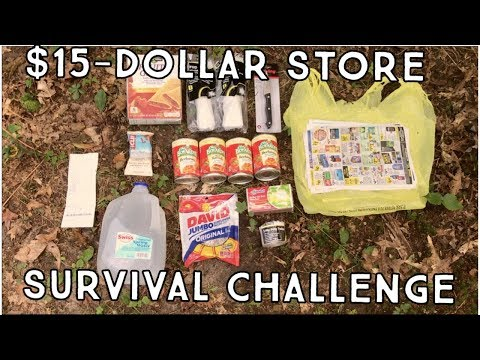 4 PEOPLE | $15 | 24 HOURS | DOLLAR STORE CHALLENGE