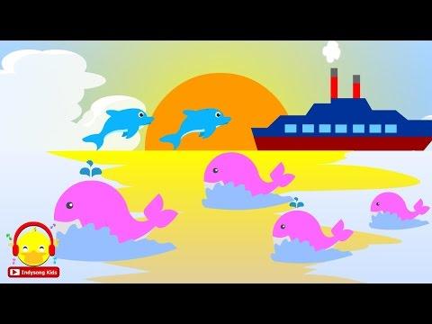 เพลงโอ้ทะเลมีปลาวาฬปลาโลมาแสนงาม ♫ Thai sea song for kids เพลงเด็กอนุบาล Indysong Kids