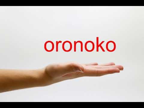 How to Pronounce oronoko - American English