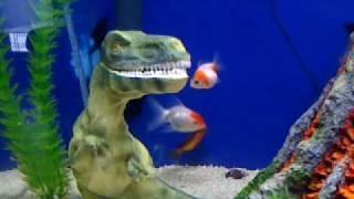 my 30 gal fish tank update