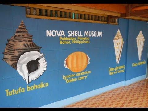 Nova Shell Musuem - Bohol Tours - WOW Philippines Travel Agency