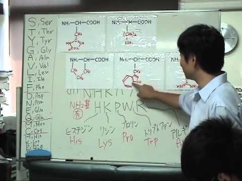 黒田裕樹の生物学講義〜分子生物学第2回『アミノ酸』