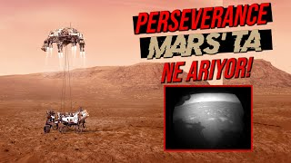Perseverance Mars'ta Yaşam Bulabilecek Mi?