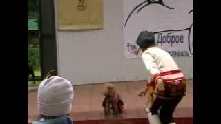 Барыня. Выступление на фестивале беспородных животных