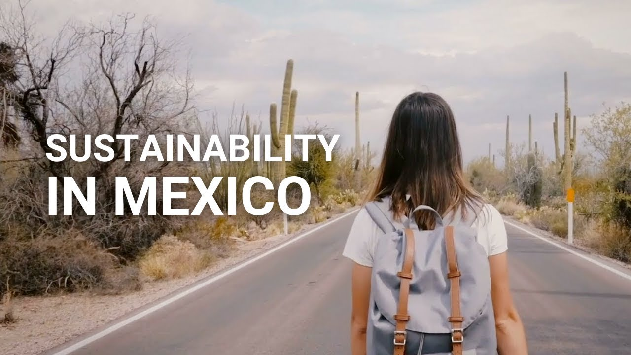 Sustainable lifestyles in Mexico