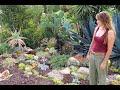 Succulent Garden Design Secrets