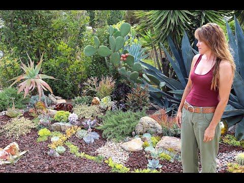 Laura Eubanks Succulent Garden Design Secrets Youtube