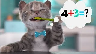 Little Kitten Preschool Adventure Educational Games - Fun Pet Kitten Care Learning Game for Kids