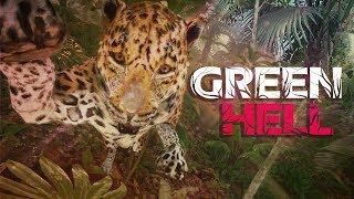 GREEN HELL #10 - Aww was für ein.. AHHHHHHHH! ● Let's Play Green Hell