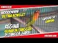 Piala Kapolda Cup I Wooooowwwww Betina Konslet Regina Semakin Tangguh Di Tangga Juara  Mp3 - Mp4 Download