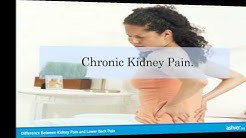hqdefault - Can Kidney Pain Confused Back Pain