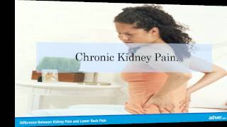 mqdefault - Lower Back Pain Vs. Kidney Pain
