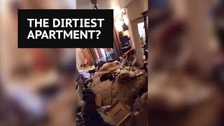 Is this New York's dirtiest apartment?