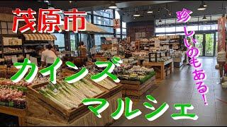 千葉県茂原市「カインズマルシェ」カインズ行ったらお忘れなく!ふむチョク♪