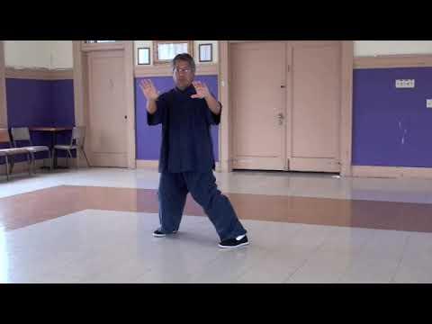 Traditional Yang Style 108 form Tai Chi Chuan 太极拳