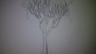 КАК НАРИСОВАТЬ ДЕРЕВО  КАРАНДАШОМ (ускоренная сьемка)(Здравствуйте! Предлагаю вашему вниманию видеоролик, где я показываю, как очень просто нарисовать дерево..., 2014-07-30T17:05:12.000Z)