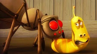 LARVA - SPIDER ATTACK | Cartoon Movie | Cartoons For Children | Larva Cartoon | LARVA Official