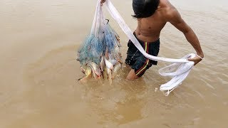 Primitive Technology : Net Fishing In the river at Kompong Cham province   Traditional Fishing