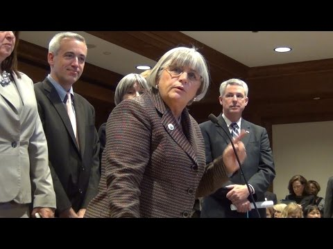 Denise Garlick testifies at Patient Safety Act Hearing