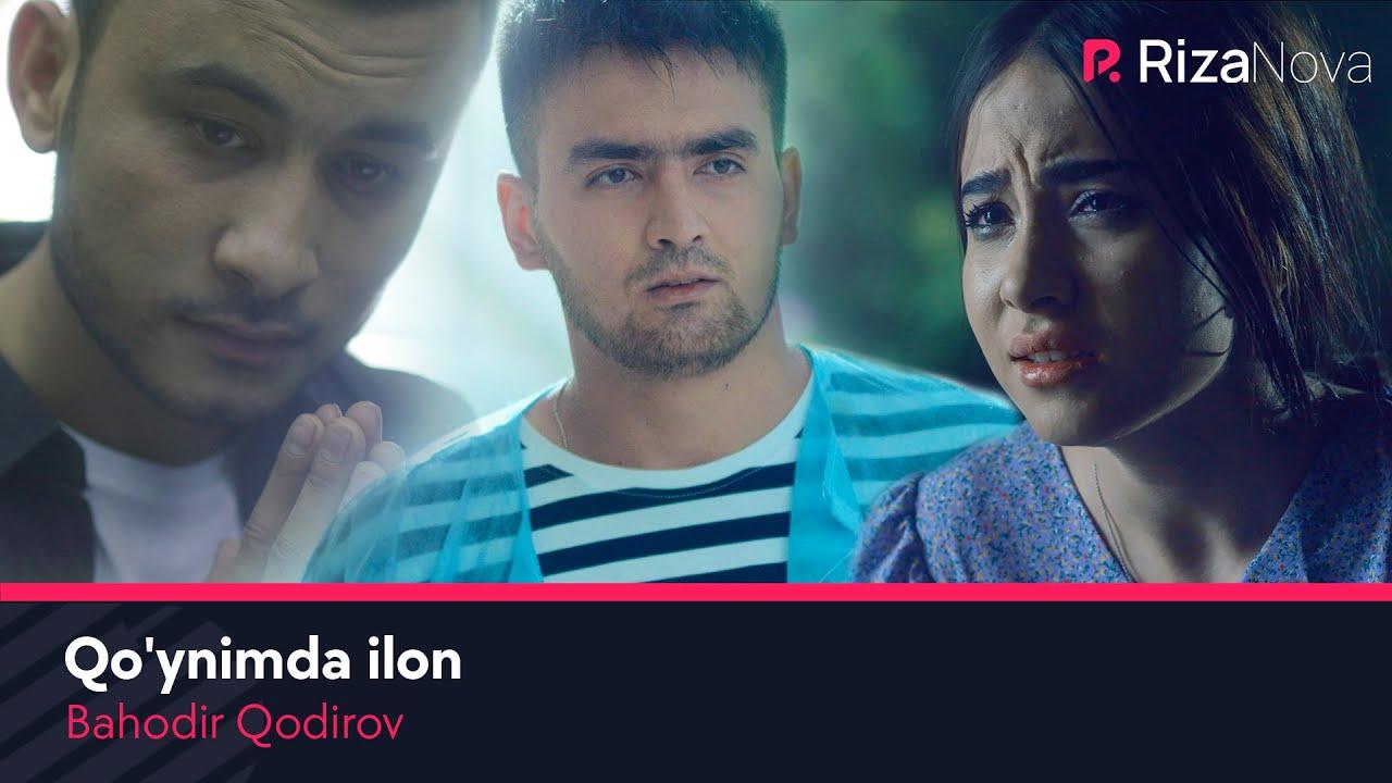 Bahodir Qodirov - Qo'ynimda ilon | Баходир Кодиров - Куйнимда илон