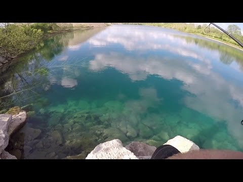 MASSIVE School Of Bass -- CRYSTAL Clear Water!