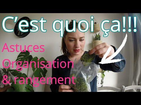 Organisation Et Rangement BUREAU/ SCRAPROOM #2