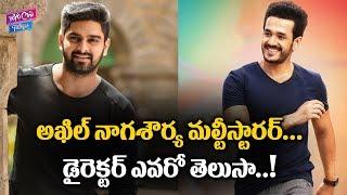akhil akkineni and naga shourya multistarrer movie updates nagarjuna tollywood yoyocinetalkies