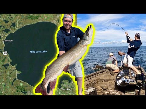 Giant MILLE LACS LAKE Musky (NEW PB)