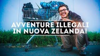 Avventure ILLEGALI in Nuova Zelanda!