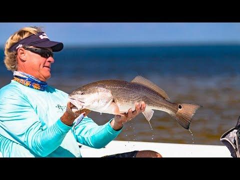 Charlotte Harbor Florida Fishing For Inshore Slam Redfish Snook Trout