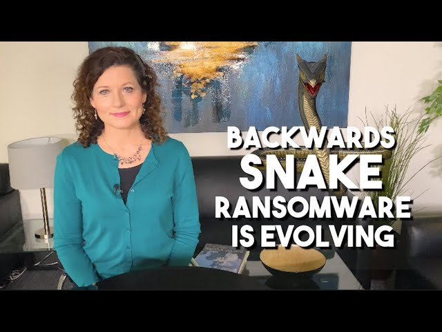 """""""Backwards SNAKE"""" or EKANS ransomware is evolving to cause even more trouble"""