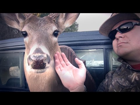 bama-boys---i'm-country-(official-music-video)