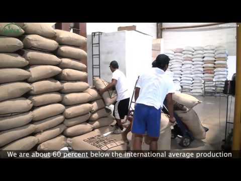 GrainPro in Guatemala TV Video VP4002MSD0814
