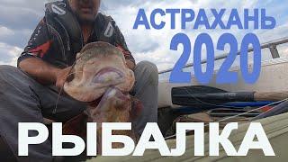 РЫБАЛКА 2020 ИЮНЬ ШАМБАЙ97