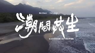 2017東海岸大地藝術節宣傳短片TEC Land Arts Festival 2017 (Short Version)