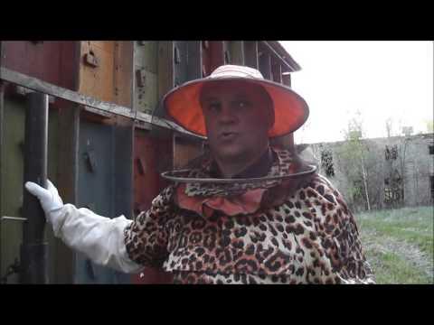 Знакомства Оренбург, бесплатный сайт знакомств без регистрации