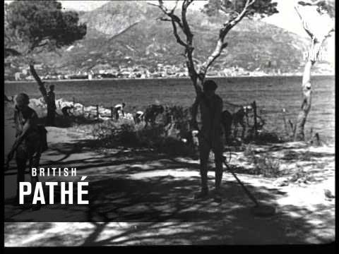 Mine Detection (1945)