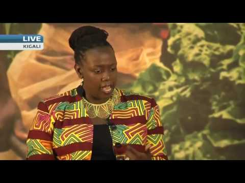 Africa's youth key drivers for agricultural transformation