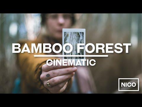 Arashiyama Bamboo Forest - Kyoto - Cinematic