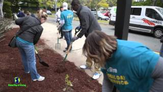 Frost School - Global Day of Service - Boston Cares