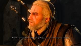 The Witcher 3: Wild hunt (Дела государственной важности)
