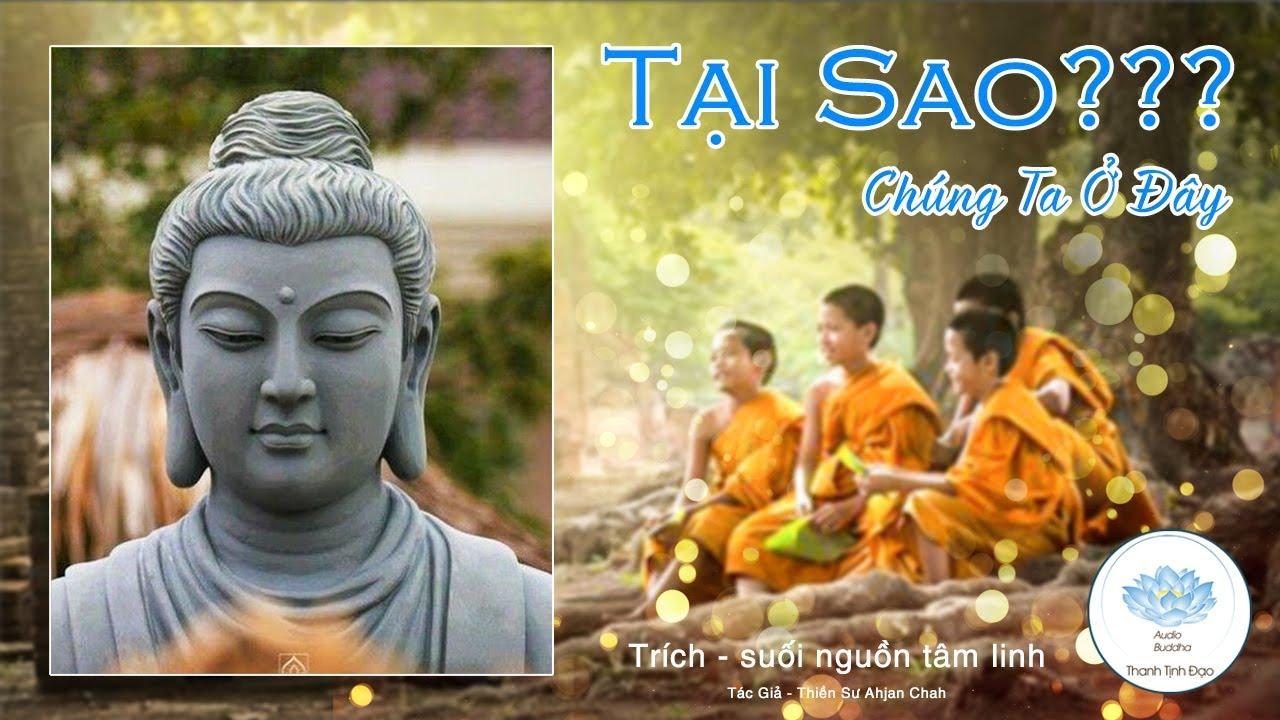 Rốt cuộc cả đời người là sống vì điều gì? – nghe lời Phật dạy hoát nhiên đại ngộ – Thanh Tịnh Đạo
