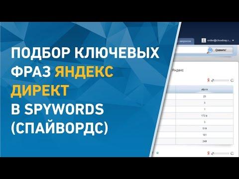 Подбор ключевых фраз Яндекс Директ в Spywords ( Спайвордс)