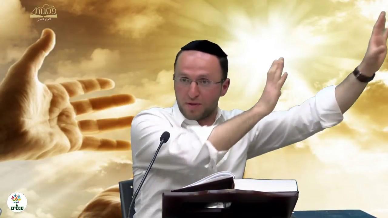 הלכות נטילת ידיים - הרב יוסף חיים HD