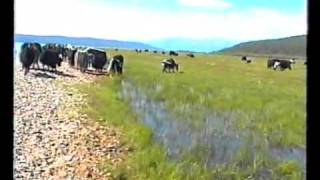 Mongolia lake Khubsugul Хубсугул 1 часть