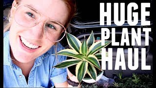 $300 SUCCULENT HAUL + GARDEN MAKEOVER | I Went Too Far Again | HEYKACKIE